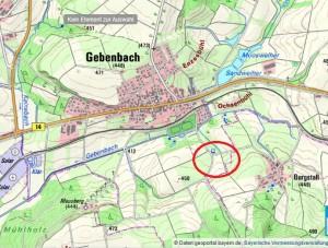 Hecke im Revier Gebenbach
