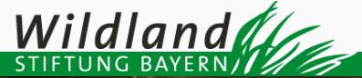 Wildland Stiftung Bayern Logo