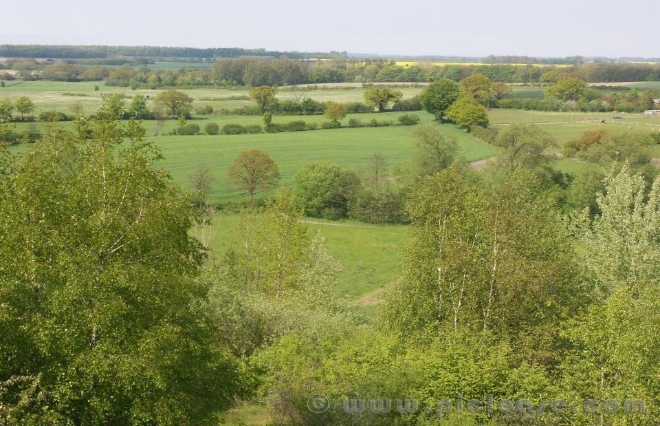 Naturnahe strukturreiche Heckenlandschaft